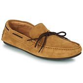 Loafers Selected  Sergio Drive Suede