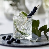 Lyngby Glas - Whisky Glas 6 Stk