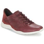 Sneakers Tbs  Jardins