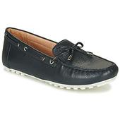 Sneakers Geox  D Leelyan